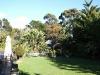 lawn-area