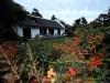 main-house-garden