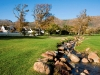 weddings-at-steenberg