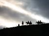 sunset-on-horseback